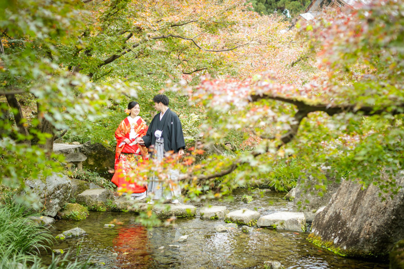 日本庭園(朱雀の庭)